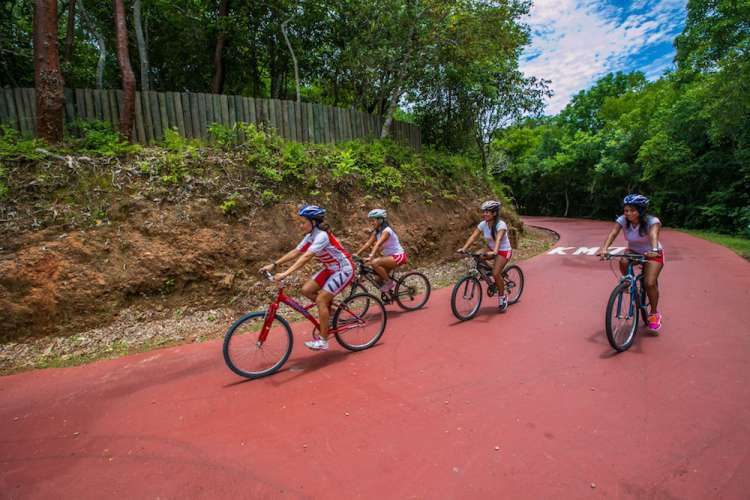 Ixtapa Cycling, Kayaking & Snorkeling Combo Adventure | Pacific Tours Ixtapa. 3 Actities in one tour, we go Cycling, Kayaking and Snorkeling in Ixtapa Zihuatanejo Mexico, this tour takes place in Ixtapa hotel Zone. Activities in Ixtapa Zihuatanejo