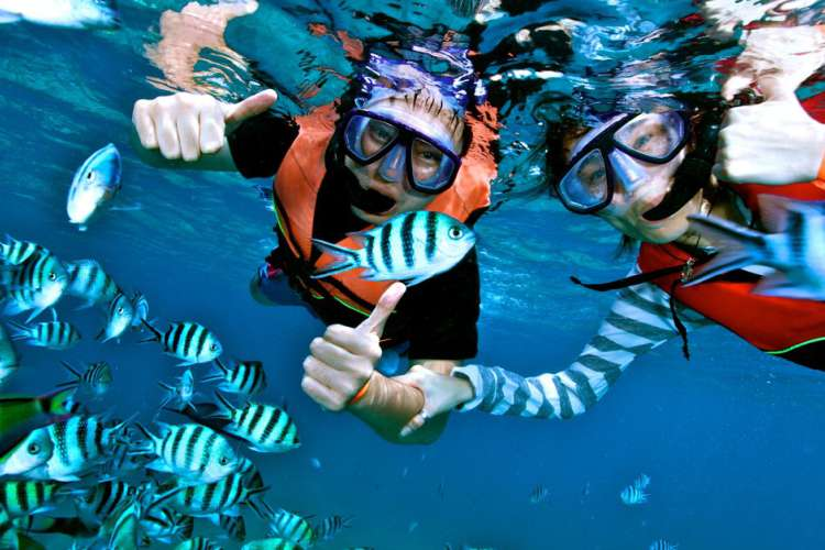 Snorkeling & Kayaking at Ixtapa Island Mexico   Pacific Tours Ixtapa. Come and enjoy two activities at the well know snorkel place in Ixtapa, Ixtapa Island, snorkel and kayak 2 activities you must do while visiting Ixtapa Zihuatanejo. Tours in Ixtapa Zihuatanejo