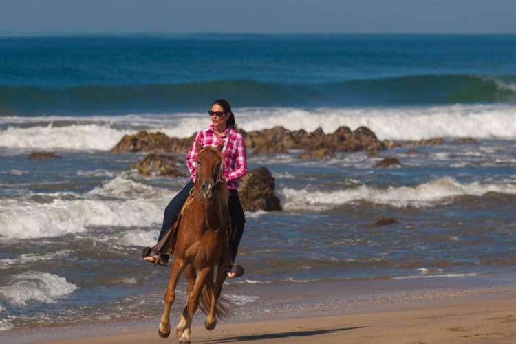 Zihuatanejo Horseback Riding at Playa Larga | Pacific Tours Ixtapa. Join us for this horse riding adventure along the magnificent Playa Larga Beach just 25 Minutes away from Ixtapa Zihuatanejo, enjoy the breeze of the ocean while riding these trained horses along the beach. Tours in Ixtapa Zihuatanejo Mexico